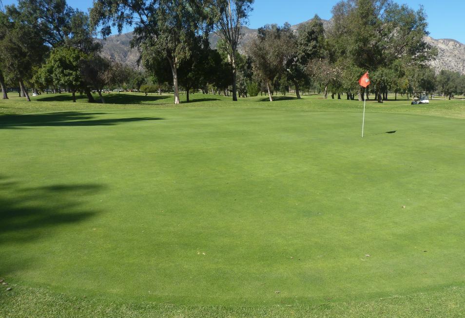 cariso golf course executive slymar
